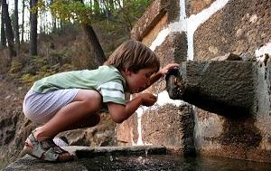 Полидипсия или повышенная жажда часто сопутствует сахарному диабету