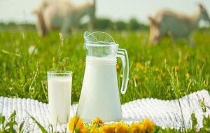 Можно ли молоко при панкреатите