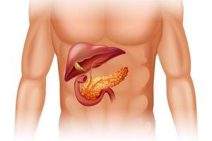 Что такое острый панкреатит