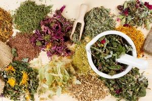 Какие травы лечат панкреатит