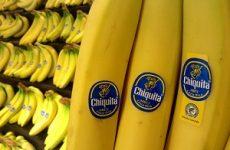 Бананы при сахарном диабете