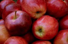 Яблоки при сахарном диабете