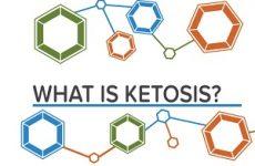 Что такое кетоз у человека?